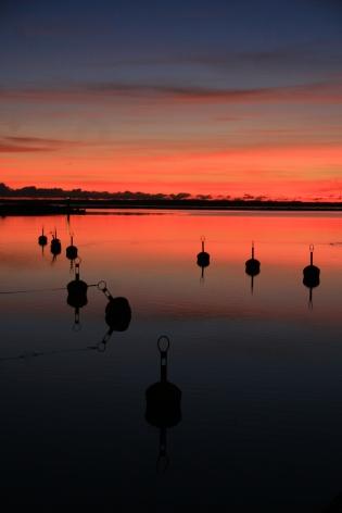 Coucher de soleil sur le port en Estonie