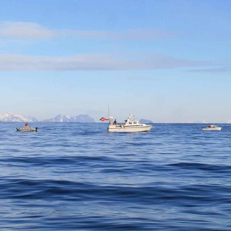En mer des Lofoten. Mars 2012