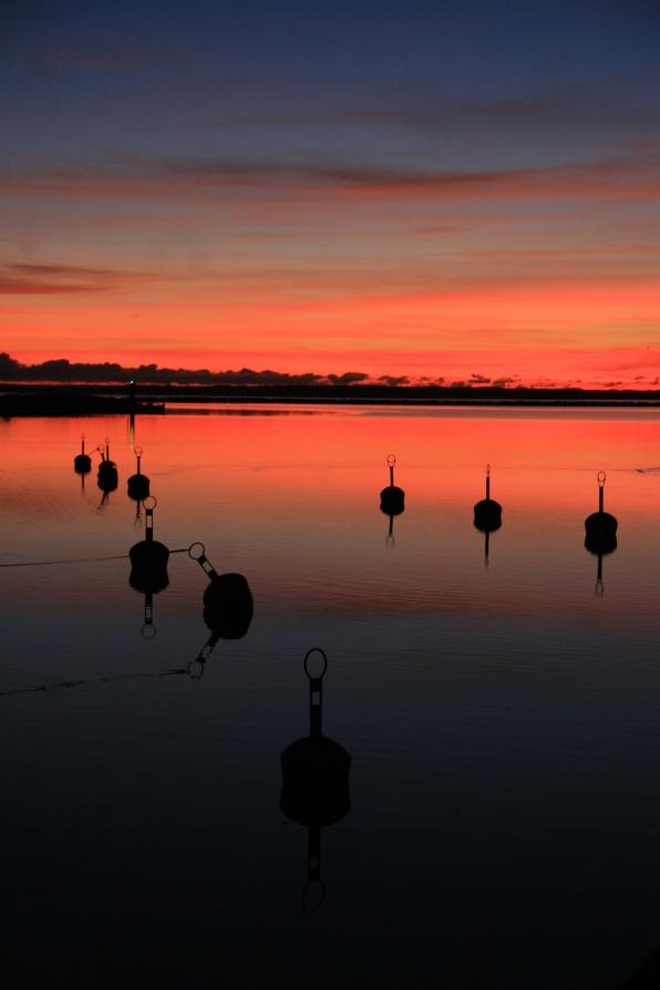 Île de Kassari, Estonie. (novembre 2011)