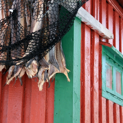 Cabane de pêcheurs, Stamsund, Lofoten. Avril 2012