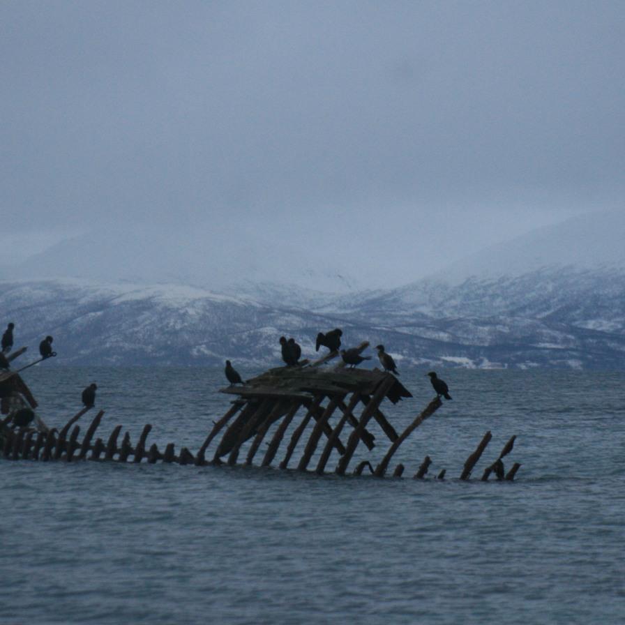 Epave à Tromsø, décembre 2010