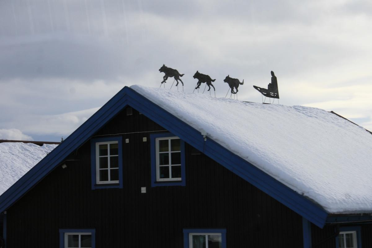 Sur les toits de Laponie...