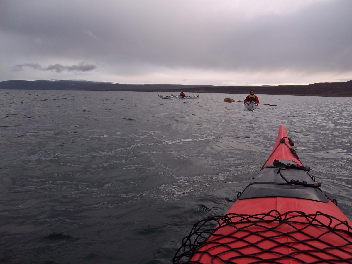 """En Islande, c'est """"rame et regarde les phoques"""""""
