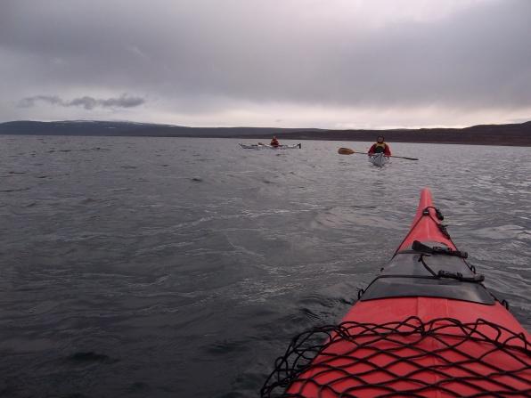 Kayak et phoques, Heydalur, Islande, septembre 2012