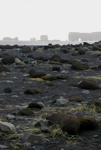 Dyrhólaey vue depuis la plage