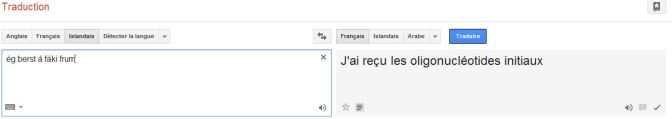 Google translate WTF