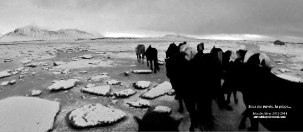 islande plage sous paves de glaceNB
