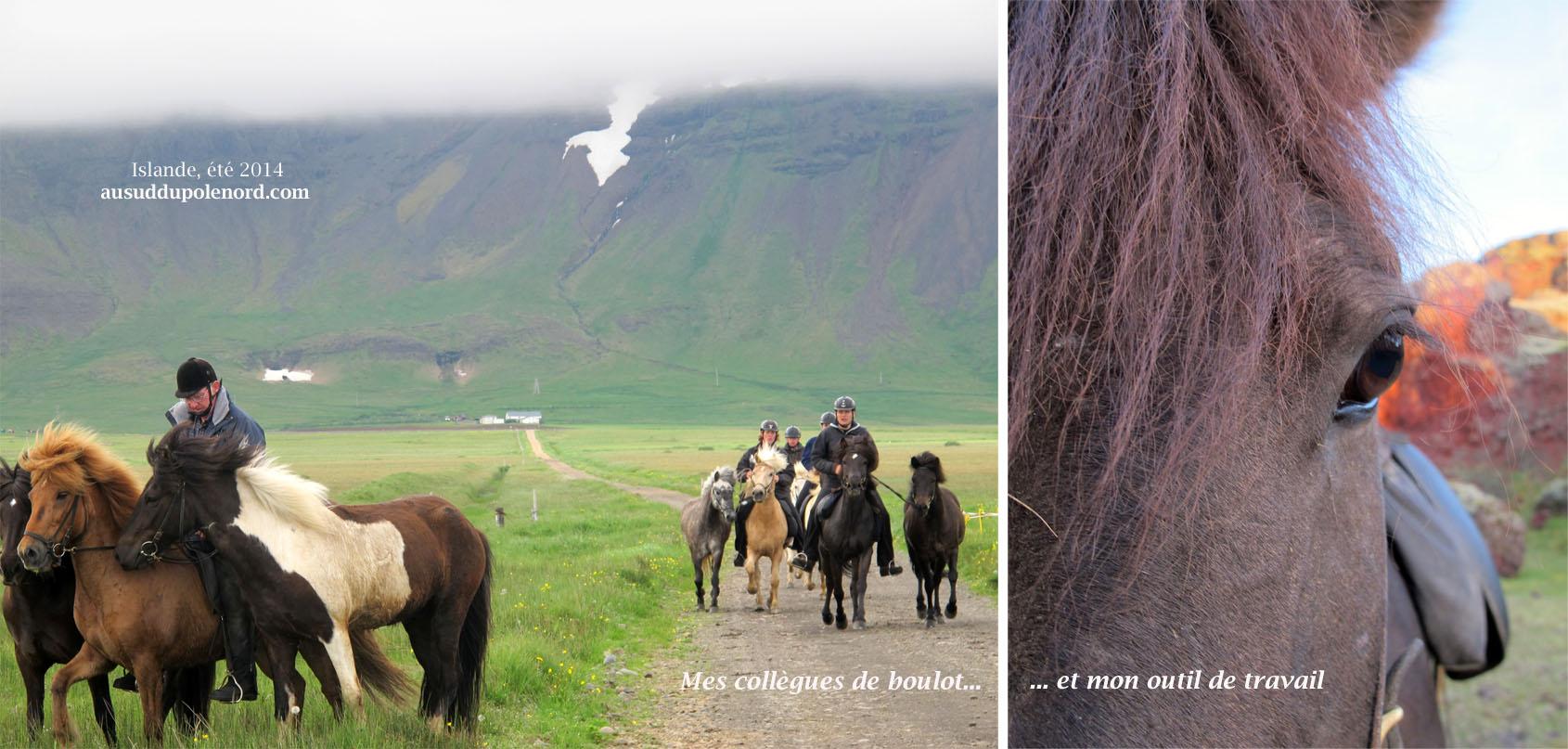 islande univers de taf