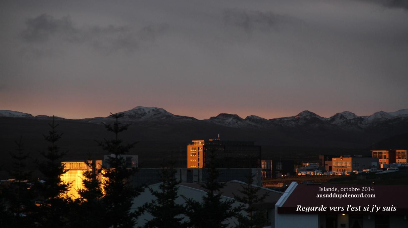 Reykjavik immeuble reflets