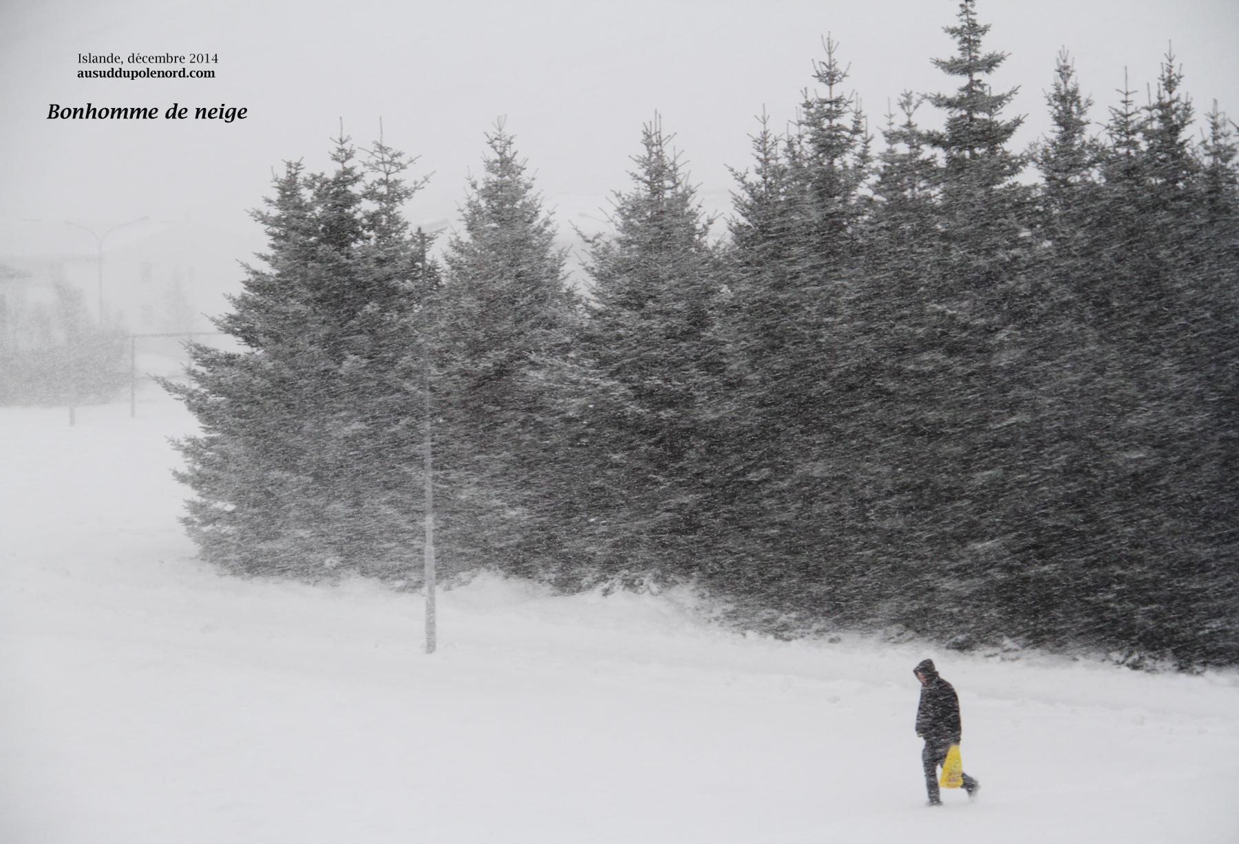 Islande bonhomme de neige